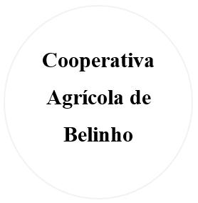 https://www.pai.pt/cooperativa-agricola-de-esposende-belinho-e-mar-4740-165/1/